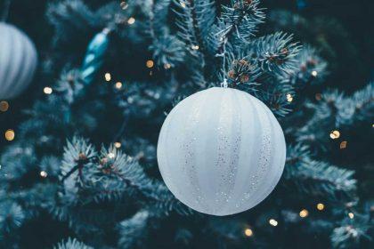 Hyvää joulua - Glad jul